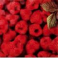 Декор Орли Raspberry W (20*20) см